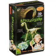 Исторические раскопки Науки с Буки BONDIBON Брахиозавр (светящийся в темноте)